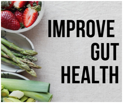 FOODS THAT ARE GOOD FOR YOUR GUT HEALTH